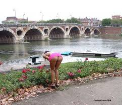 Image result for pont neuf, toulouse