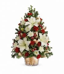teleflora s golden pines tree from fl expressions in oswego il here for larger image
