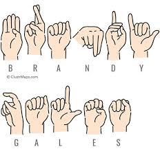 Brandy Gales - Public Records