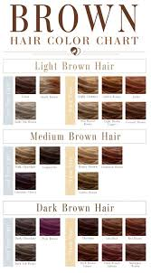 Chestnut Hair Colour Chart 24 Shades Of Brown Hair Color Chart To Suit Any Complexion