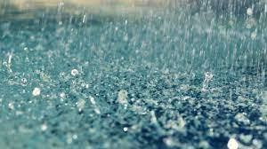 Rain HD Wallpaper   1920x1080