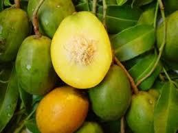 Top 12 Jamaican Fruits We Love - Jamaicans.com
