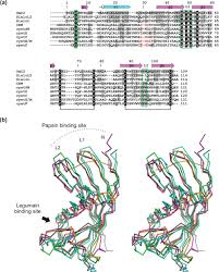 crystal structure and functional characterization of an   figure