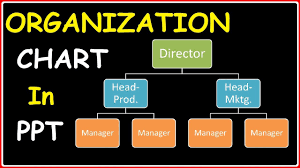 How To Do An Org Chart In Powerpoint 2010 Creating An Organizational Chart In Powerpoint 2010 Presentations 2 Animations Effects Tutorials
