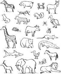 Sagome Di 90 Animali Da Stampare Colorare E Ritagliare Immagini