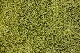 Green Carpet Texture Stock Photo Picture And Royalty Free Image