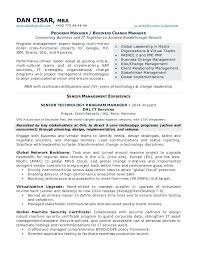 Sap Solution Manager Resume Business Consulting Resume Resume For