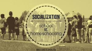 "homeschooling archives wholesome children ""well my only problem homeschooling is the lack of socialization "" is by far the most common argument i ve personally heard against homeschooling from"