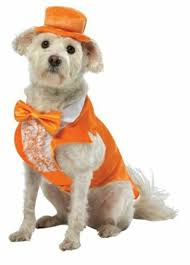 Dumb And Dumber Lloyd Christmas Tuxedo Dog Pet Costume Halloween Orange White
