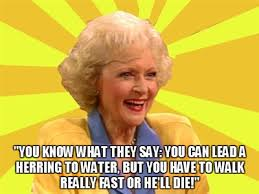 Image result for golden girls memes