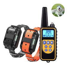<b>DOG training</b> Store - Amazing prodcuts with exclusive discounts on ...