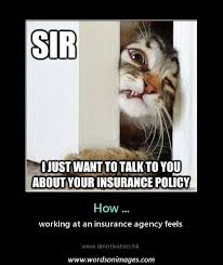funny life insurance quotes raipurnews motivational