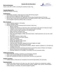 Computer Programmer Resume Examples Puter Job Description In Sa