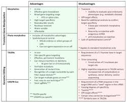 Chart Detailing The Advantages And Disadvantages Of Current