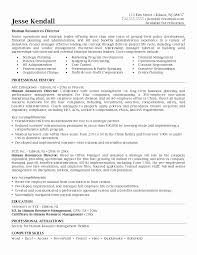 Sample Resume Format For Hr Executive Unique Sample Resume For An