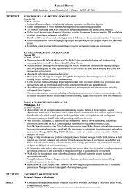 Sales Marketing Coordinator Resume Samples Velvet Jobs Project S
