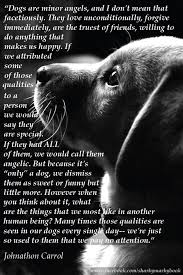 40 Dog Loss Quotes Comforting Words When Losing A Friend Golden Enchanting Dog Death Quotes