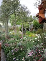 trailfinders australian garden australian garden designaustralian native