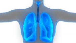 Профилактика заболеваний органов дыхания