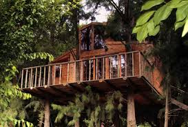Treetop Life In LaosTreehouse Hotel Africa