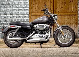 in pics harley davidson sportster 1200 custom rediff com get ahead