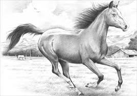 running horse drawing. Contemporary Drawing Pencil Sketch Of Running Horse Inside Drawing