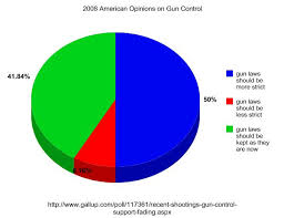 Stgapgov Problem Section Gun Control