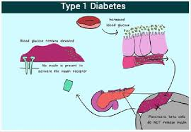Glucose Levels Chart Bismi Margarethaydon Com