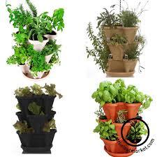 Kitchen Herb Garden Kit Indoor Outdoor Herb Garden Kits