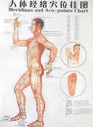 Buy Generic Color Body Acupuncture Points Chart Meridian