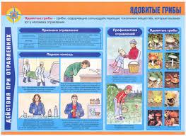Реферат первая медицинская помощь при отравлении алкоголем Фото из Мск Реферат первая медицинская помощь при отравлении алкоголем