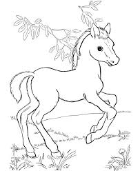 Coloring Picture Of Horses Free Coloring Library