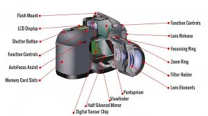dslr camera  amp  mirrorless camera reviews   best canon vs  nikonthe interior workings of a typical k dslr camera
