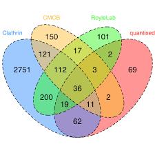 R Venn Diagram Ggplot2 Rstats Quantixed