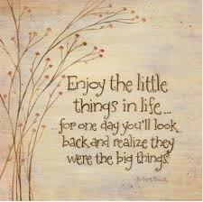 Small Life Quote Extraordinary Little Things In Life Quote