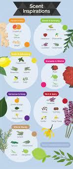 Essential Oil Perfume Recipes Fix Com