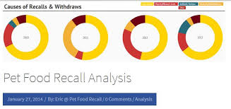 Why You Should Feed Your Health Compromised Cat Raw Food