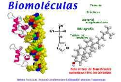 """Curso de Verano Quimica II: Unidad III """" Biomoleculas"""""""