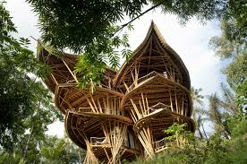 inside of simple tree houses. Fabulous Tree Houses Design Alternative Having Bamboo Materials House Interior Amazing Inside . Ideas Of Simple