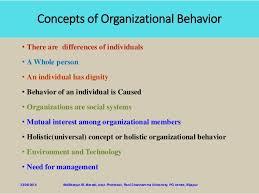 What Is Organizational Behavior Organisational Behaviour