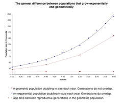 effective population size definition population ecology wikipedia