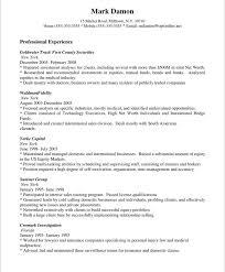 Sales Representative Resume Profile Professional Experience Mark