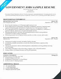 Federal Government Resume Format Classy Resume Format For Any Job Antique Resume Template For Government Job