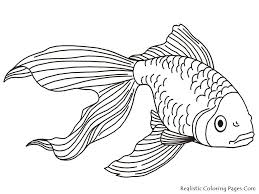 Http Colorings Co Fish Coloring Pages