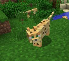 tame baby ocelot minecraft. Perfect Tame Ocelotedit With Tame Baby Ocelot Minecraft