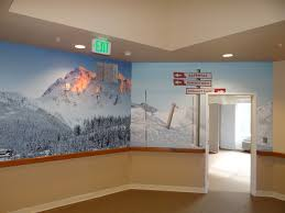 office wall murals. Wall Murals Office. Marvelous Pictures Gallery Office C E