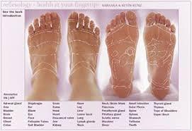 Interactive Foot Reflexology Chart Just Redid The Chart