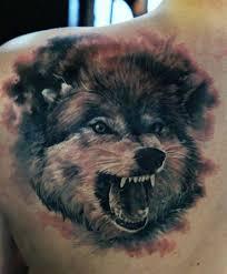 тату оскал волка тату волк татуировка оскал
