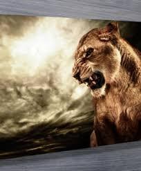 animal on metal animal wall art australia with buy wall art canvas prints online in australia