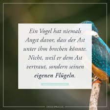 Status Spruchde Ein Vogel Hat Niemals Angst Davor Dass Der Ast